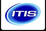 Patrick van Tol, Chef Werkplaats ITIS